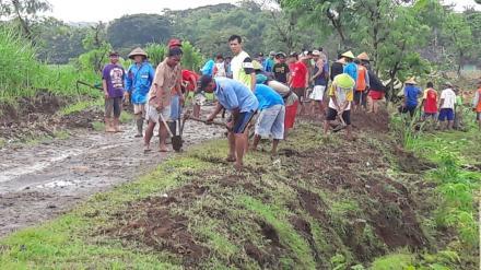 Camat, Lurah, dan Warga Bahu-Membahu Memberantas Tanaman Liar di Dusun Bakal Pokok