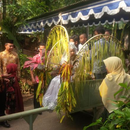 Tradisi Mengarak Pengantin Baru Dengan Gerobak Dusun Sungapan
